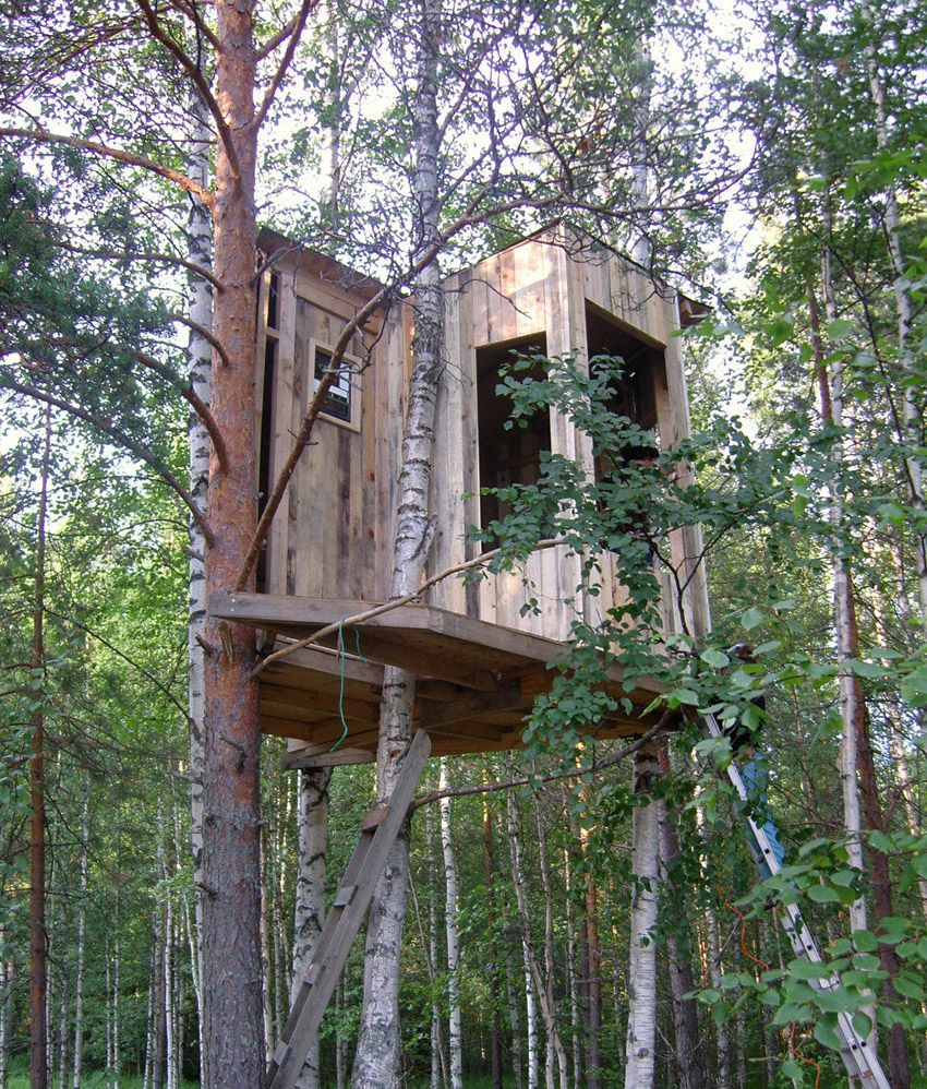 Exterior Creative Wooden Box Tree House Design With Glass Wood Window And Tree Canopy Details The Choice Of Live Cool Tree Houses Tree House Designs Tree House