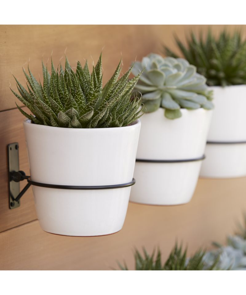 Wall Planter Hook Reviews Crate And Barrel Succulent Wall Planter Succulent Wall Wall Mounted Planters