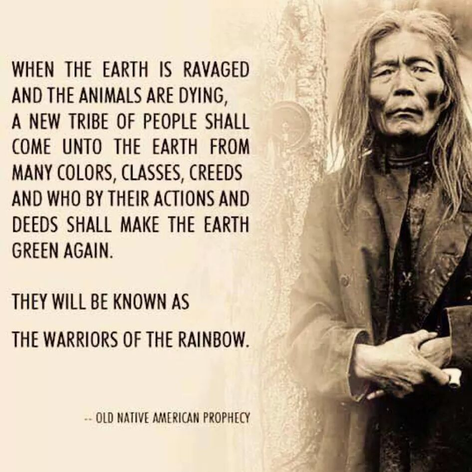 Warriors of the Rainbow | American quotes, Native american quotes, Native  american prophecies