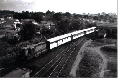 E. F. Araraquara -- Trens de passageiros do Brasil