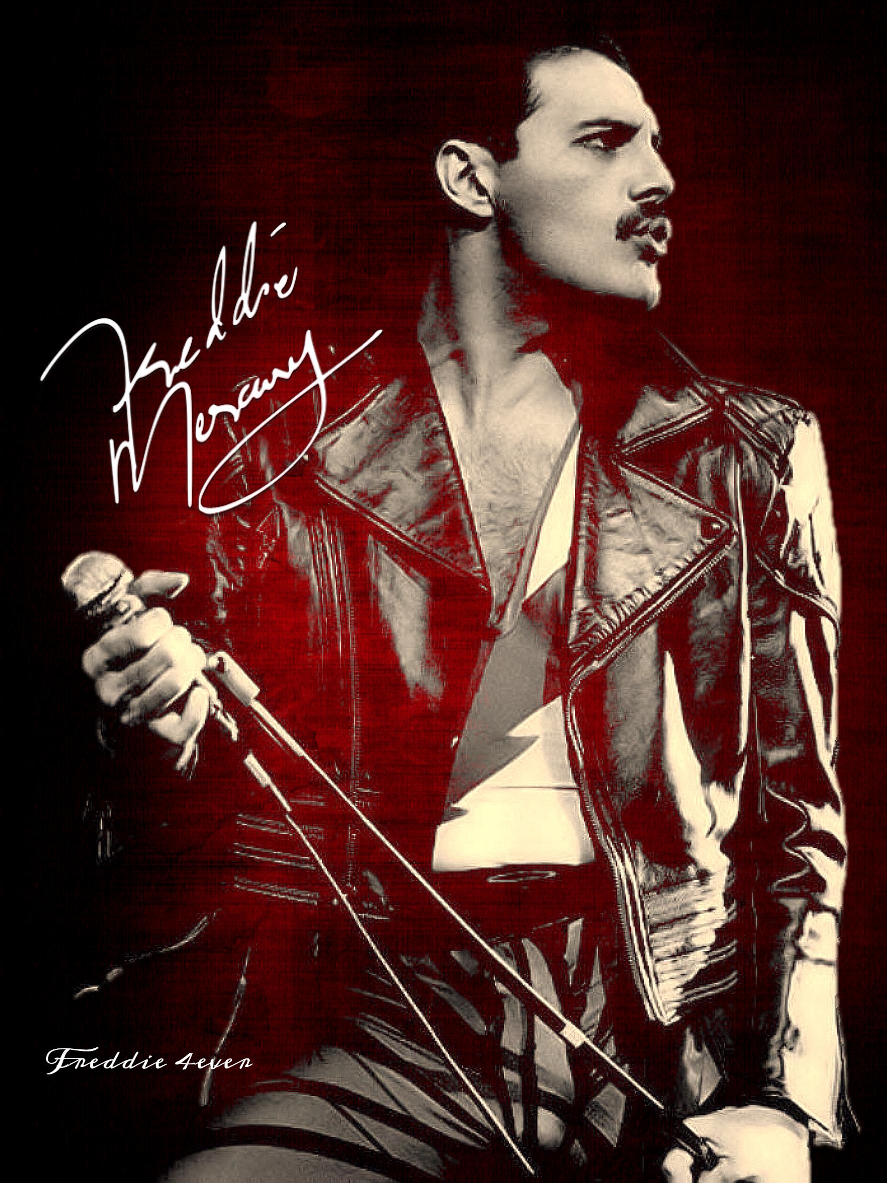 Musik Rock Queen Freddie Mercury Freddie Mercury Queen Pictures
