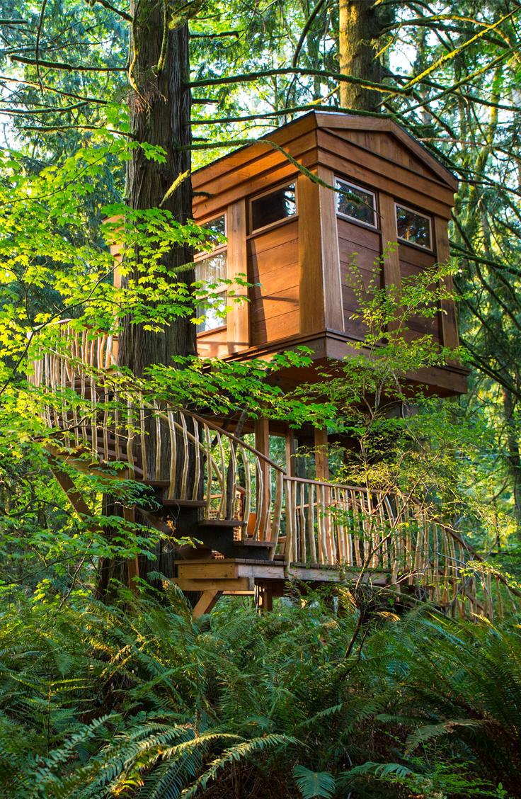 10 Incredible Tree-House Hotels in the U.S. | Baumhaus, Klettern und ...