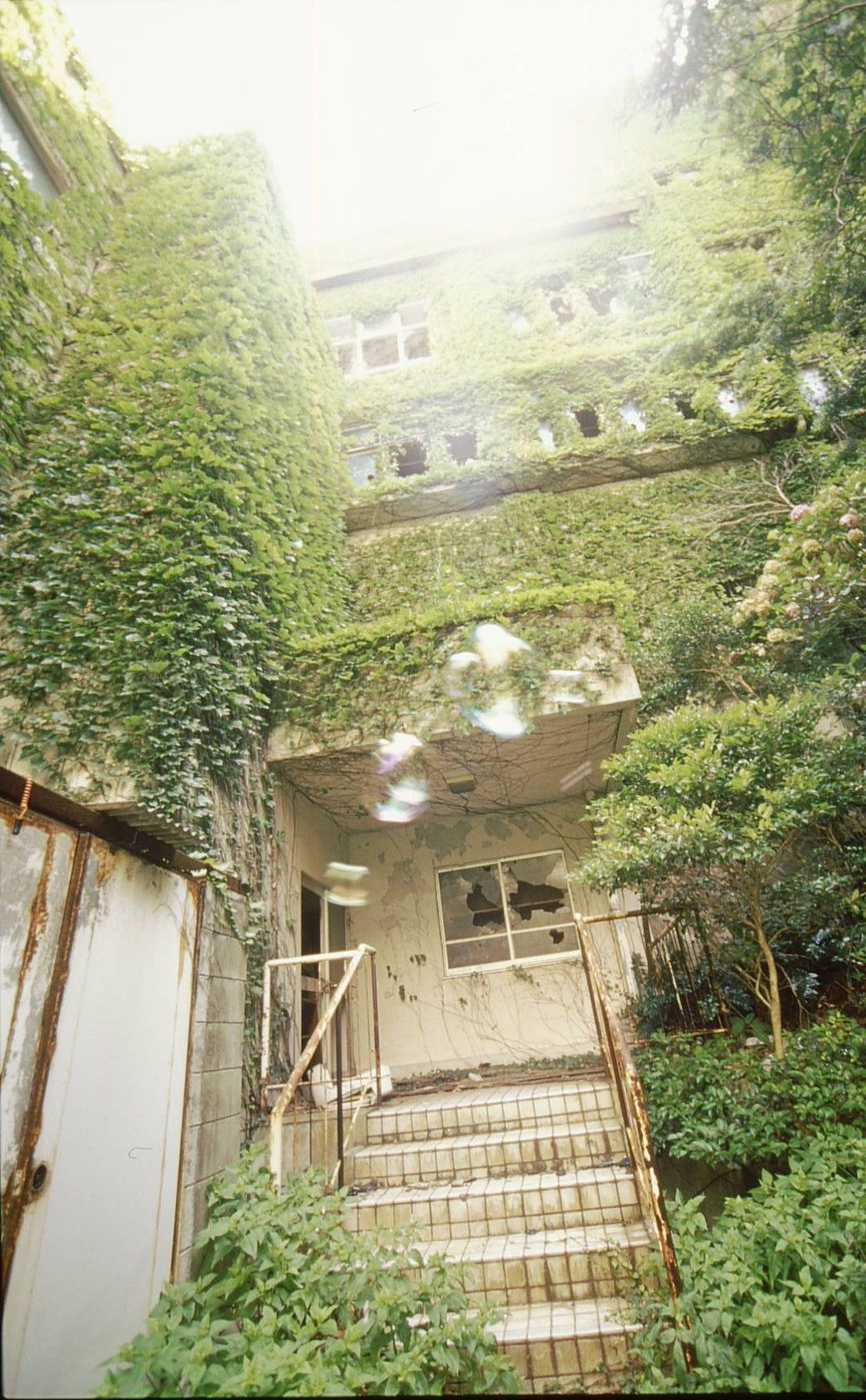 和歌山廃墟 スシヨシ楼 関西の洋館とレトロビル 廃墟 ビル 洋館 廃墟