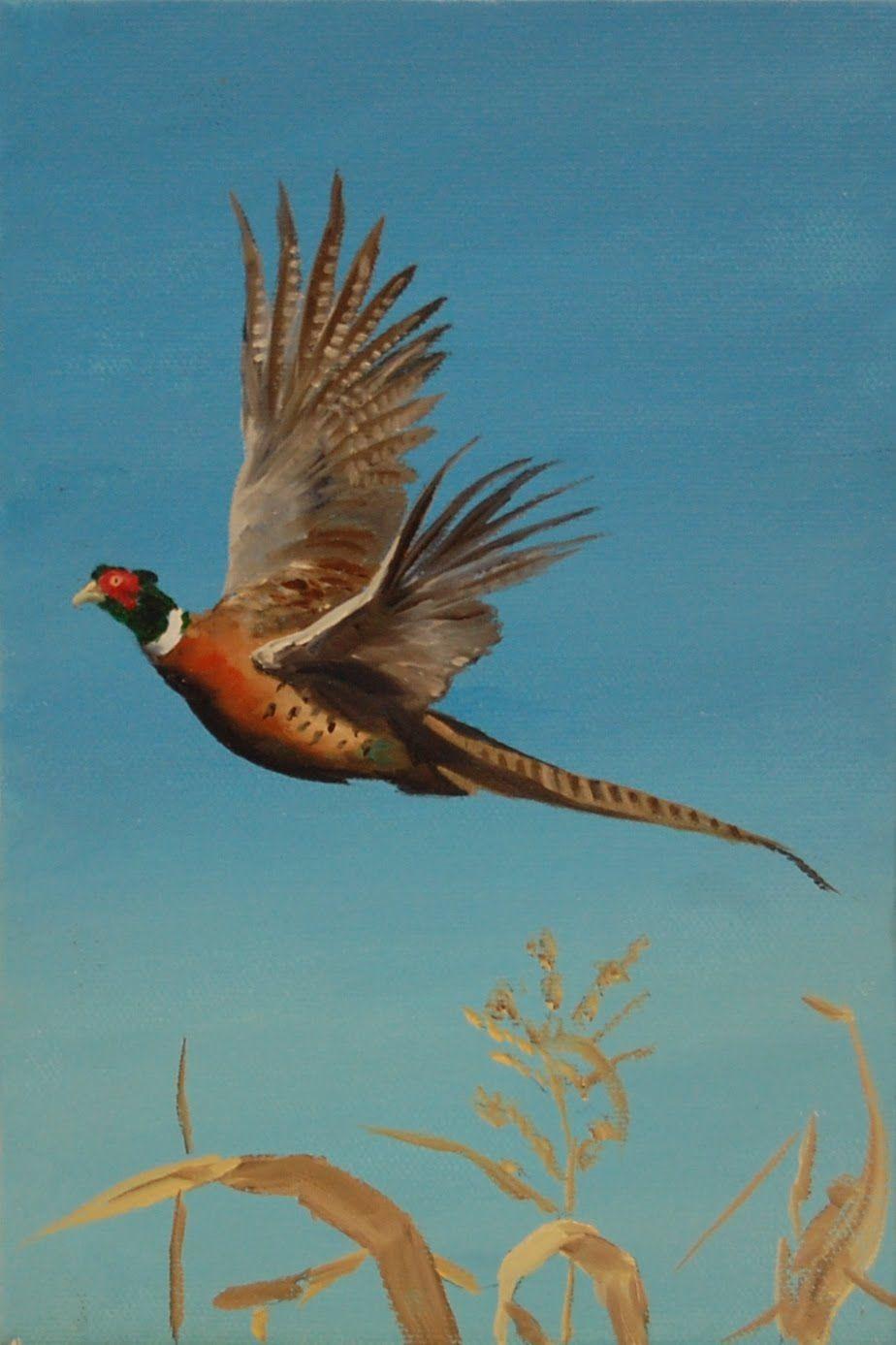 Oil Paintings Pheasant Flying Pheasant Pheasant Hunting