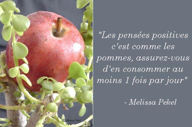 Les Pensees Positives C Est Comme Les Pommes Assurez Vous D En