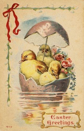Baby Ducks Purple Egg Umbrella Boat Roses Easter Vtg Antique Postcard