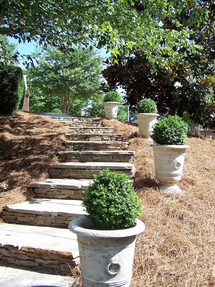 gartengestaltung-hanglage-mulch-treppe-sandstein-buchsbaum