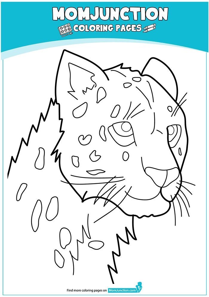 25 Best Cheetah Coloring Pages For Your Little Ones Coloring Pages Color Baby Cheetahs