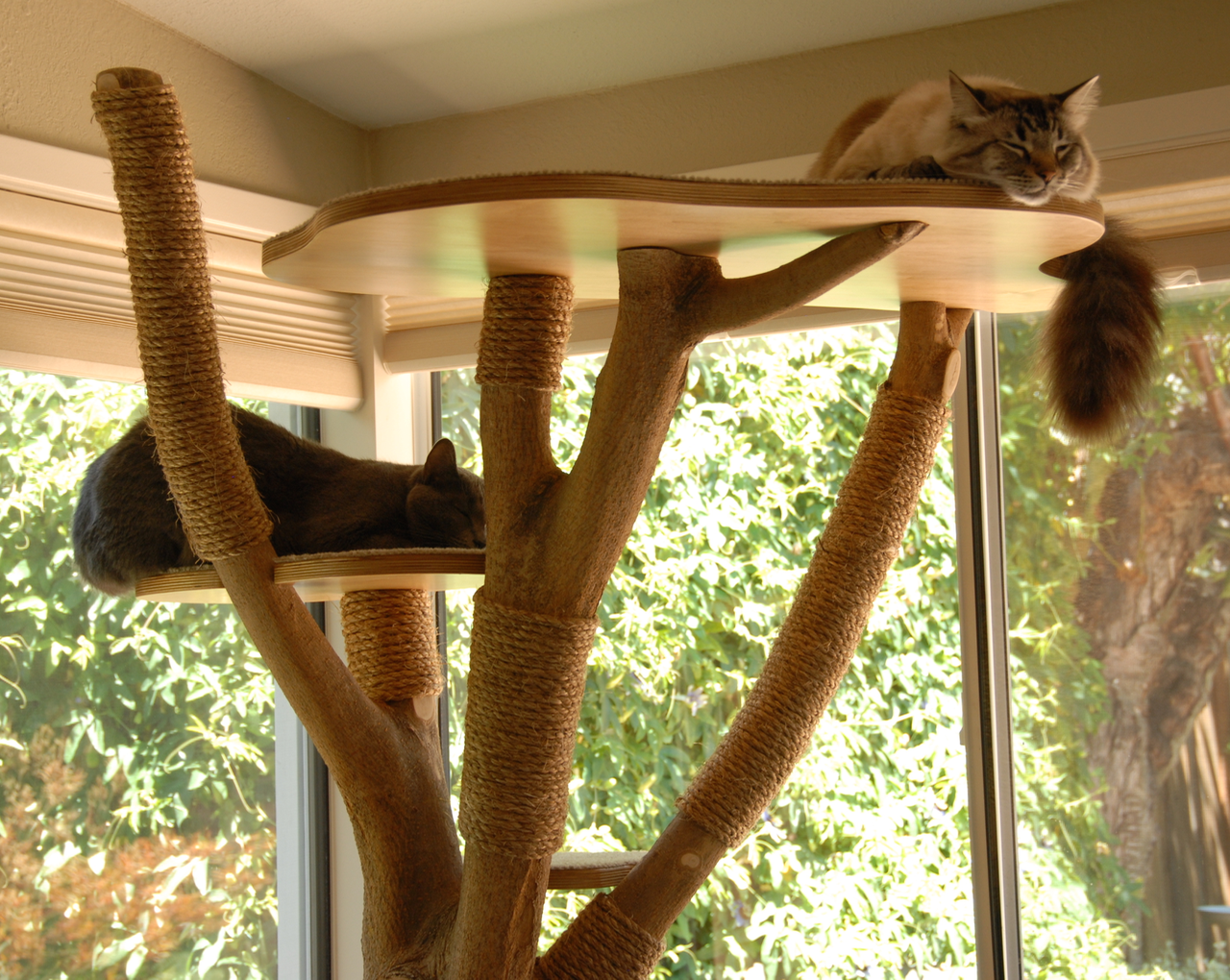 Cat Tree Cat tree, Diy cat tree, Diy cat tower