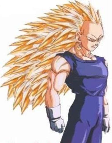 Dragon Ball Z Vegeta Ssj3