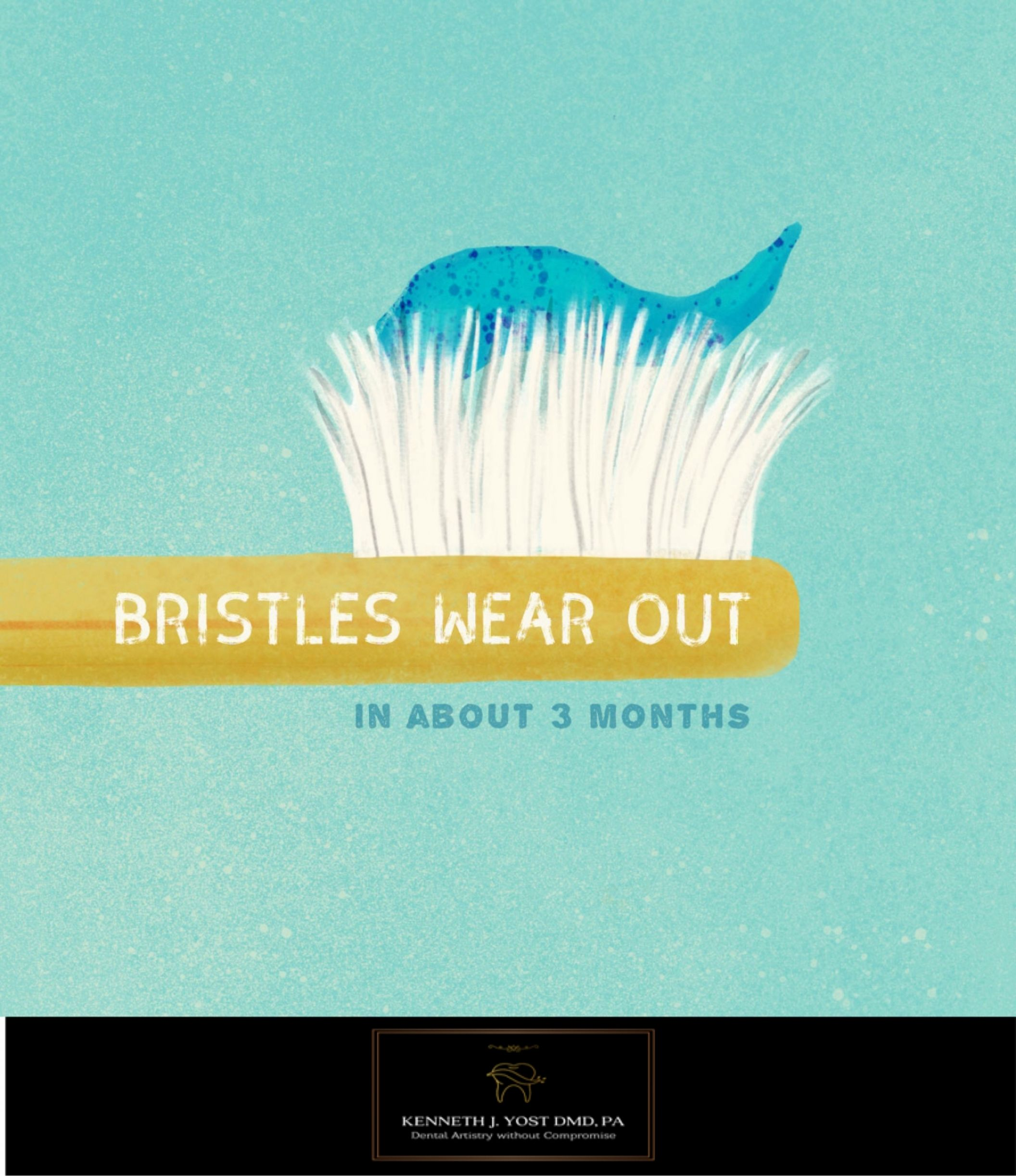 Did You Know That Toothbrush Bristles Wear Out After About Three