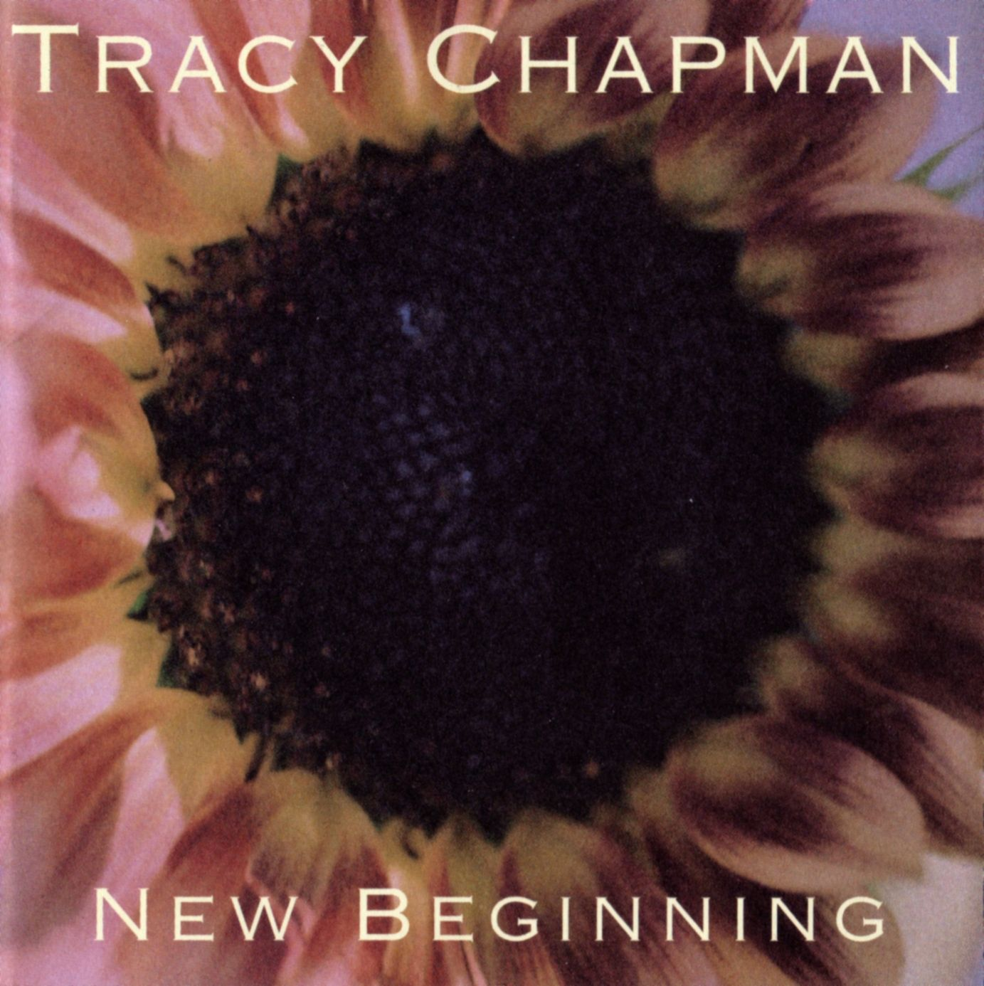 Tracy Chapmans The Promise Album Cover