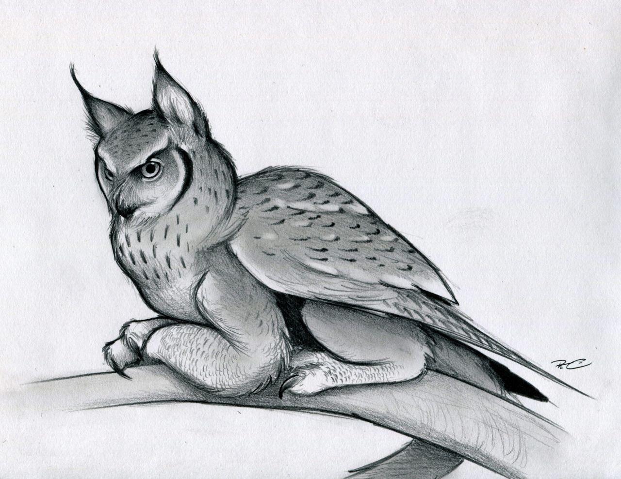 Фэнтези картинки карандашом животные