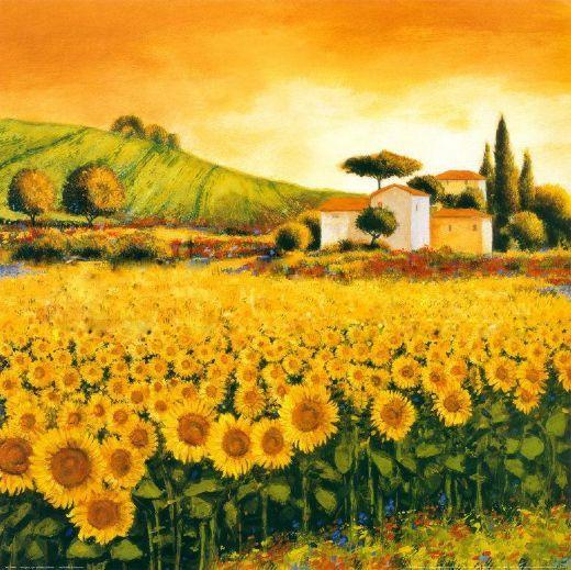 richard-leblanc-valley-of-sunflowers-24023.jpg (520×519)
