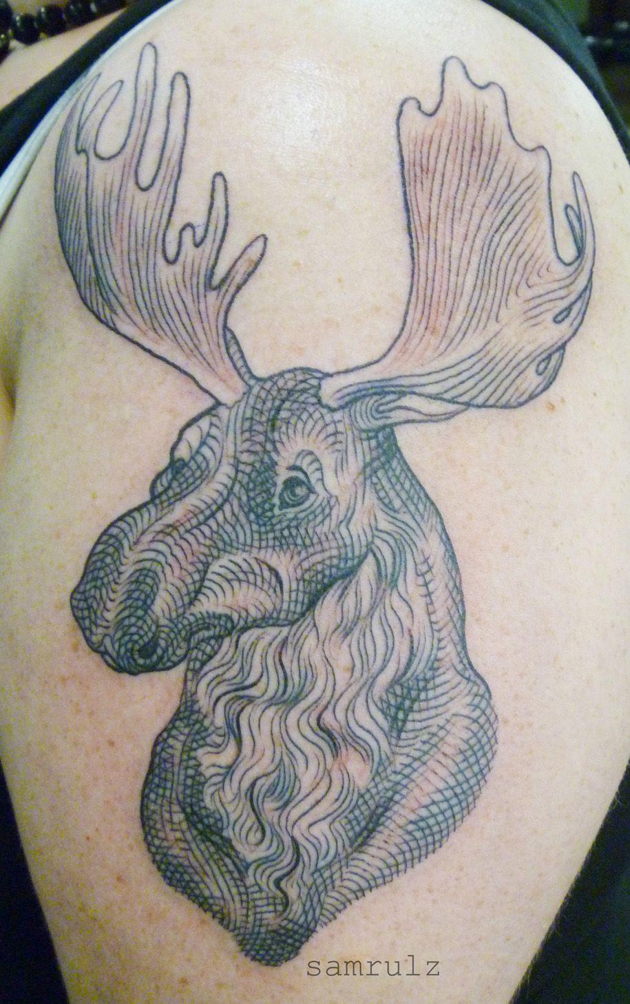illustrated moose tattoo tattoo art pinterest moose tattoo and inspiring tattoos. Black Bedroom Furniture Sets. Home Design Ideas