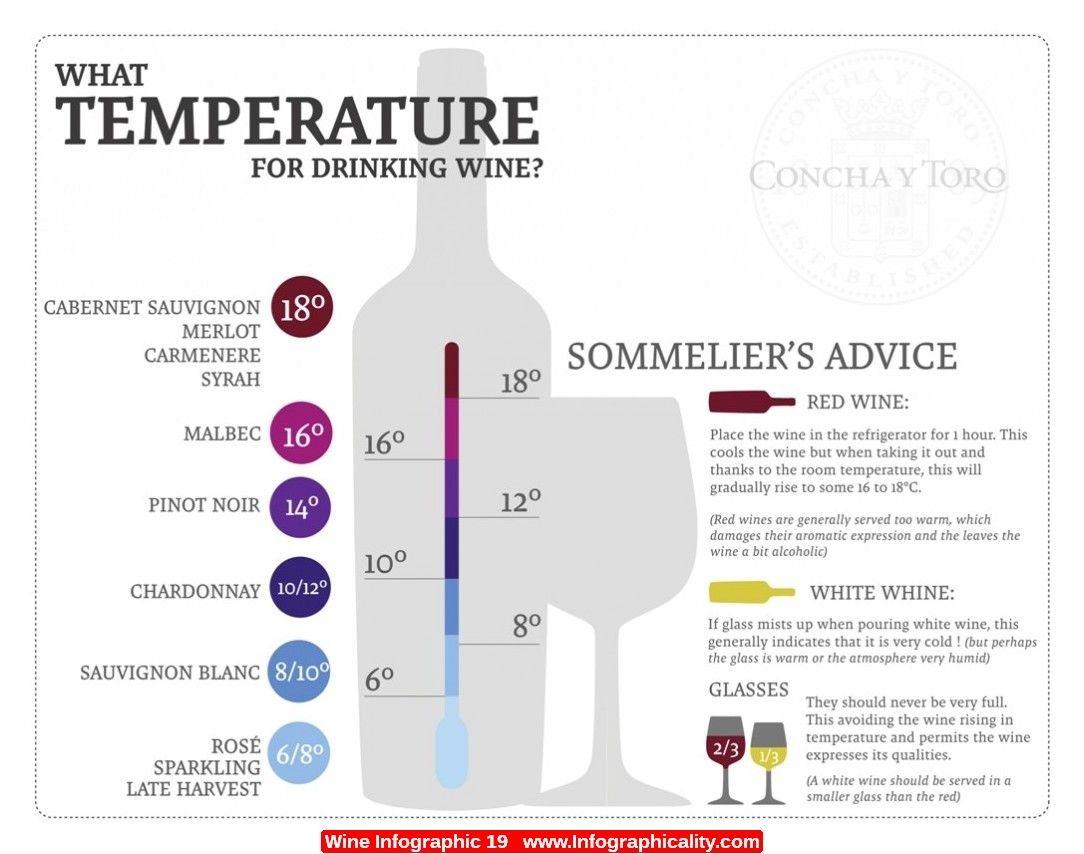 Great wine temperature guide or chart also pin by deborah anne gagliano on pinterest infographic rh uk