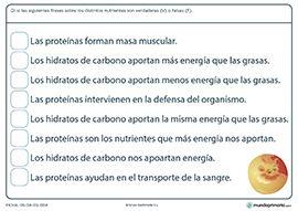 Actividades de ciencias naturales (para 3º de Primaria) - Mundo Primaria