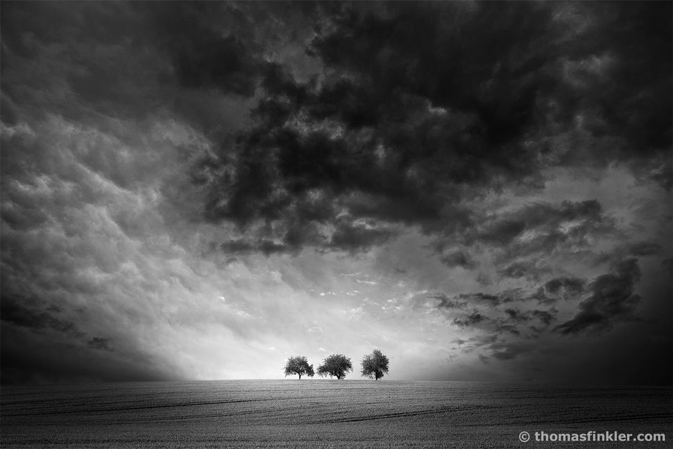 Thomas Finkler Photography Fine Art Landscape Photography Dramatic Sky 3 Trees Fine Art Landscape Photography Black And White Landscape Photography Wall Art