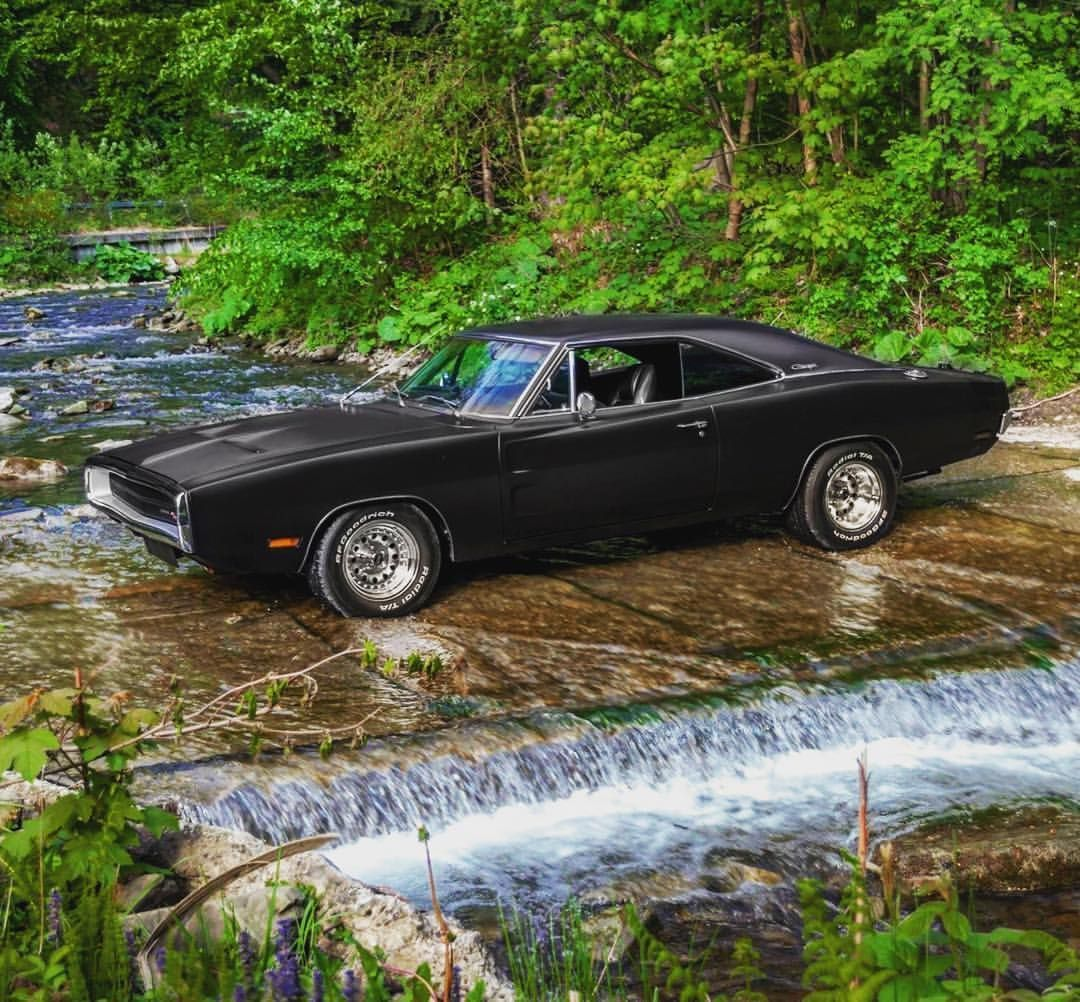A Charger out in the Wild ?☠️?☠️?☠️? #mopar #mopars #mop…