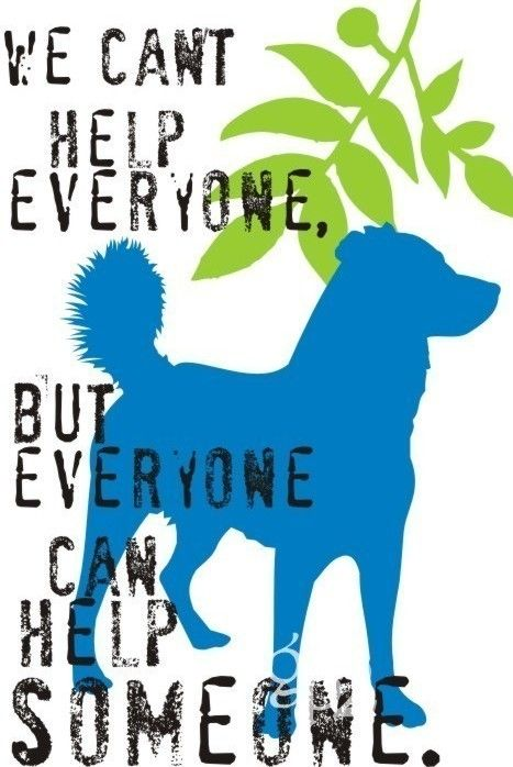 Learn About Great Ways To Help Others Through Habitat For Humanity Http Www Tchabitat Org Volunteer Dog Print Art Volunteer Quotes Dog Quotes
