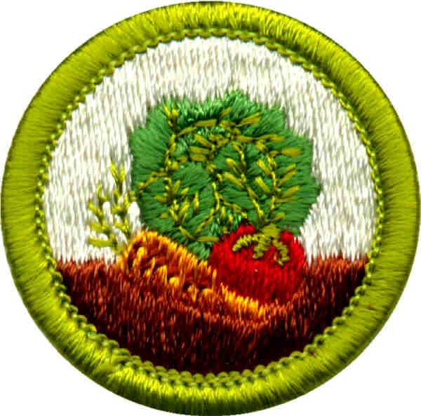 Gardening Merit Badge for Boy Scouts | Scouts insignias | Pinterest ...