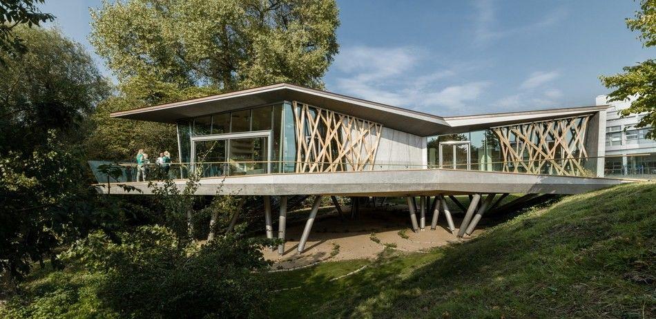 Maison contemporaine tripartite sur pilotis en bois et béton à