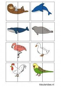 Dierenspel voor kleuters, kleuteridee.nl , animal match for preschool, free…
