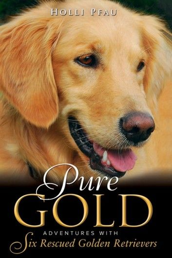 Pure Gold Adventures With Six Rescued Golden Retrievers In 2020