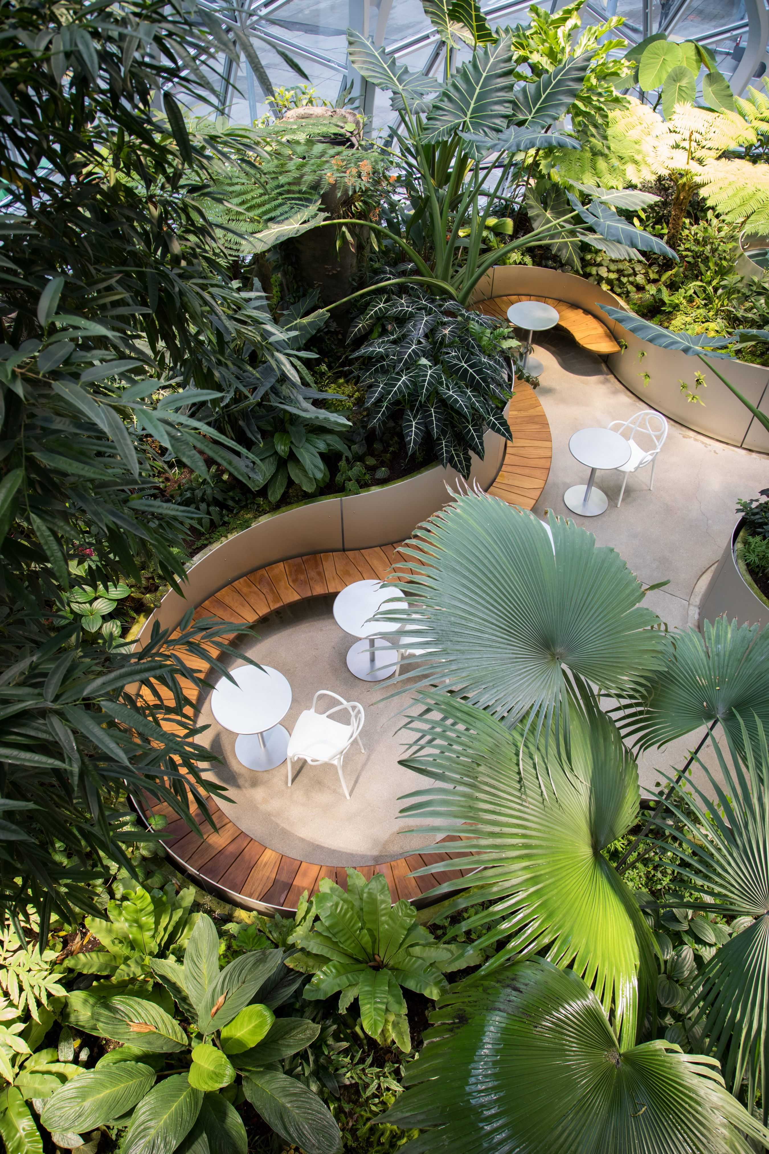 The Spheres In The New Amazon Headquarters Wowow Home Magazine Landscape Design Green Architecture Exterior Design