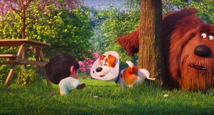The Secret Life Of Pets 2 2019 Hd Movies Eng Sub Avi In 2020 Secret Life Of Pets Secret Life Movies By Genre