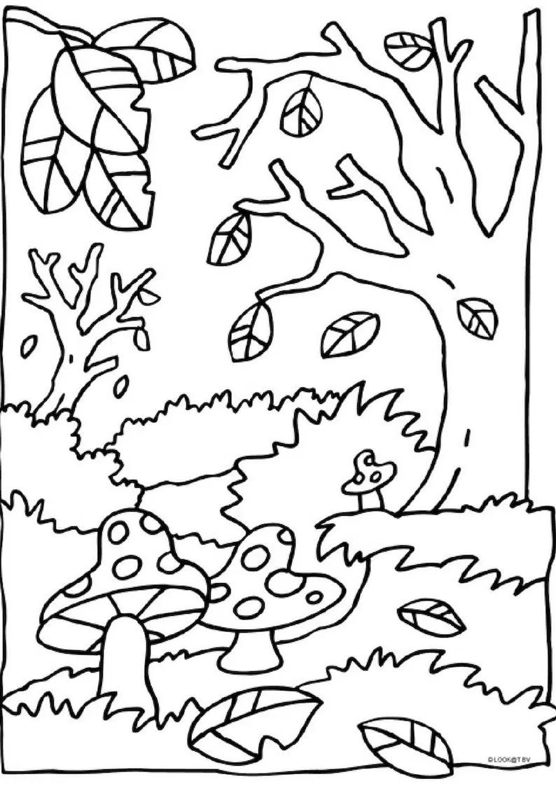 Раскраски на тему осень краса. Осенние раскраски для детей ...