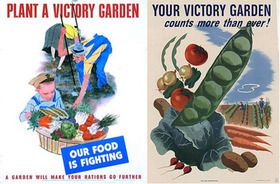 Victory Gardens: Today's return to environmentalism, conservation, and food production have roots in history. This board looks at self-sufficiency earlier in history, and the direction America might be heading with food production today.