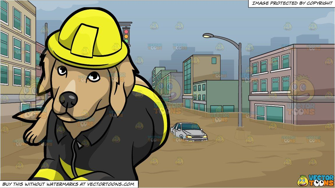 A Resting Fire Safety Dog And Flooded City Street Background In 2021 Street Background Fire Safety City Streets