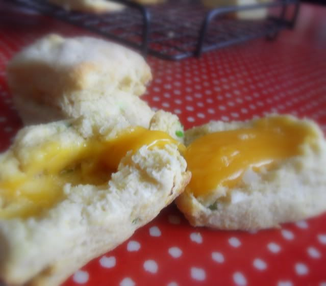 Cheese Filled Cornmeal Sconesfrom The English Kitchen