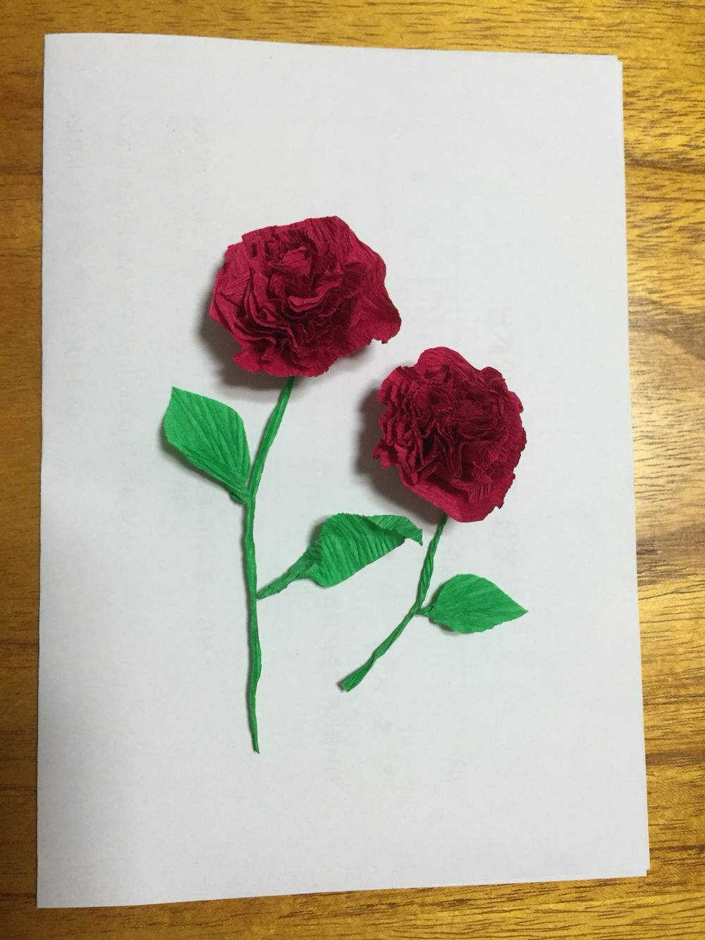Carnation flowers easy thank you or mothers day card made of carnation flowers easy thank you or mothers day card made of tissue paper flower directions layer 6 8 pieces of paper staple an x in the center mightylinksfo Choice Image