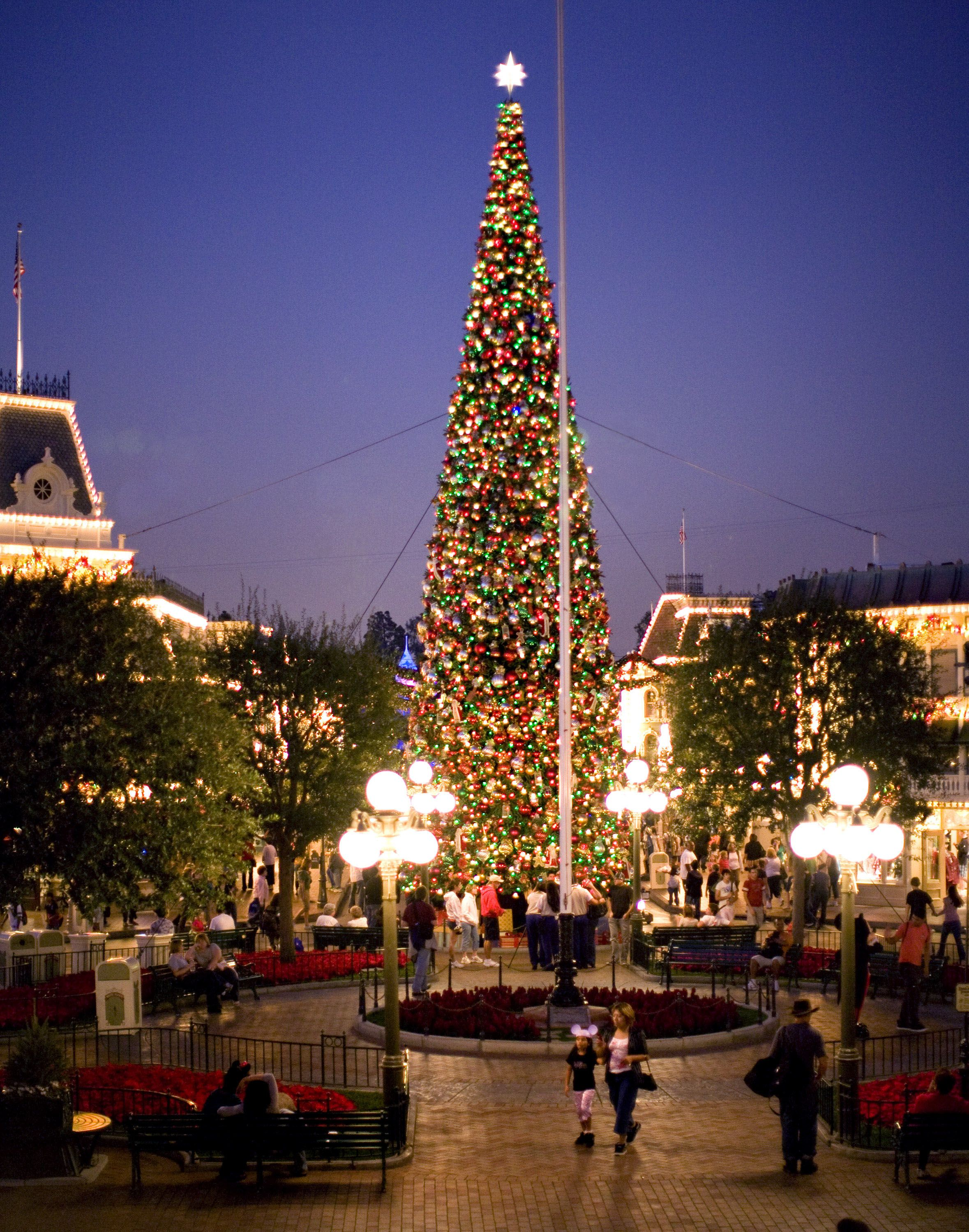 christmas decorations disneyland holiday decorations dad logic - Disneyland Christmas Decorations