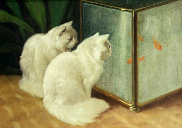 "Made by: Arthur Heyer , ""White Cats Watching Goldfish"""