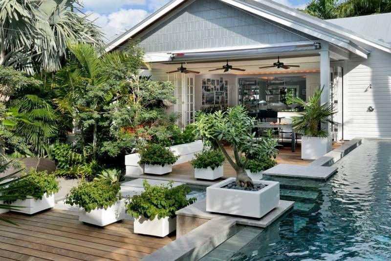 japanischer garten mit bonsai - baum neben dem pool | aussen, Hause und garten