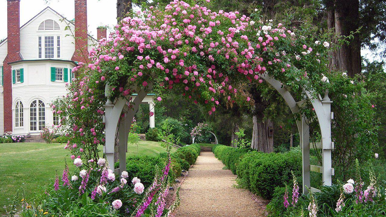 Оформление сада (47 фото) в 2020 г | Садовая решетка ...