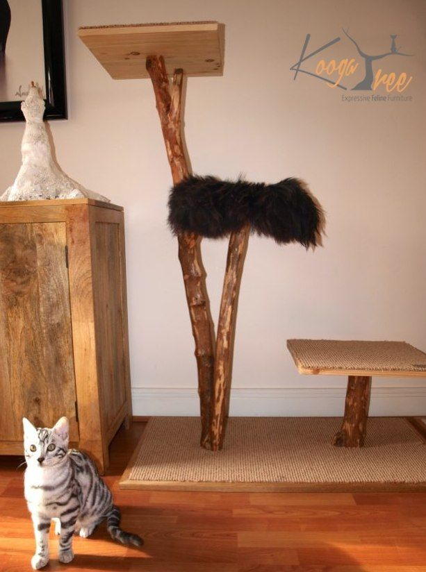 Koogatree Natural Custom Wooden Cat Tree Scratching Post For The