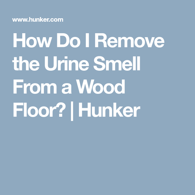 How Do I Remove The Urine Smell From A Wood Floor Urine