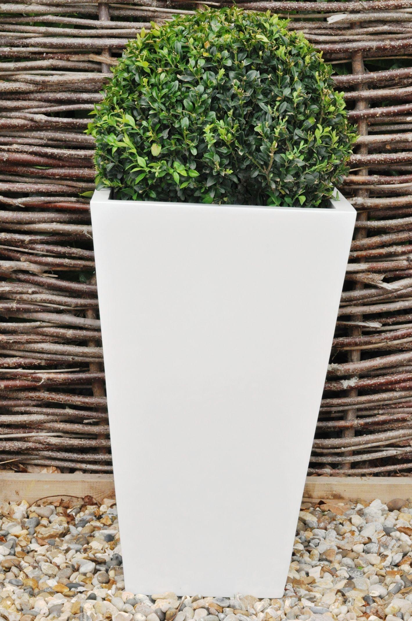 Contemporary square flower pot