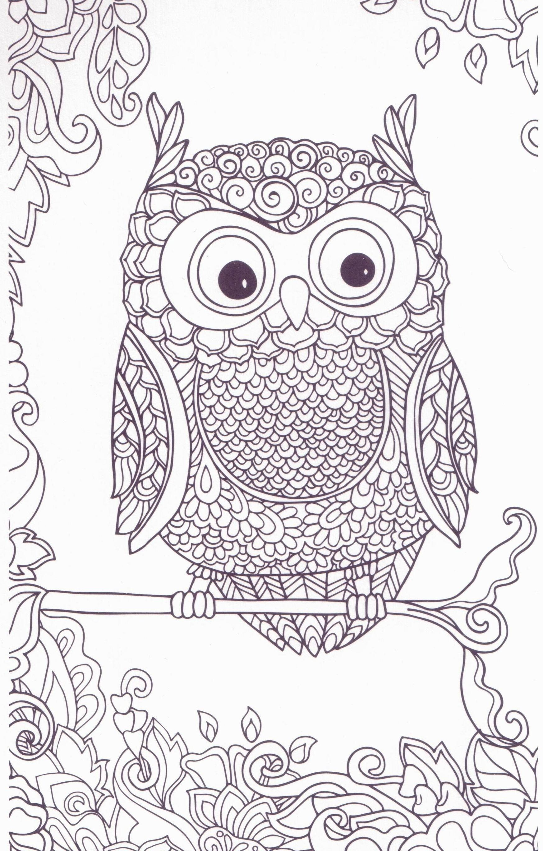 owl coloring pages for adults luxury coloring owl coloring