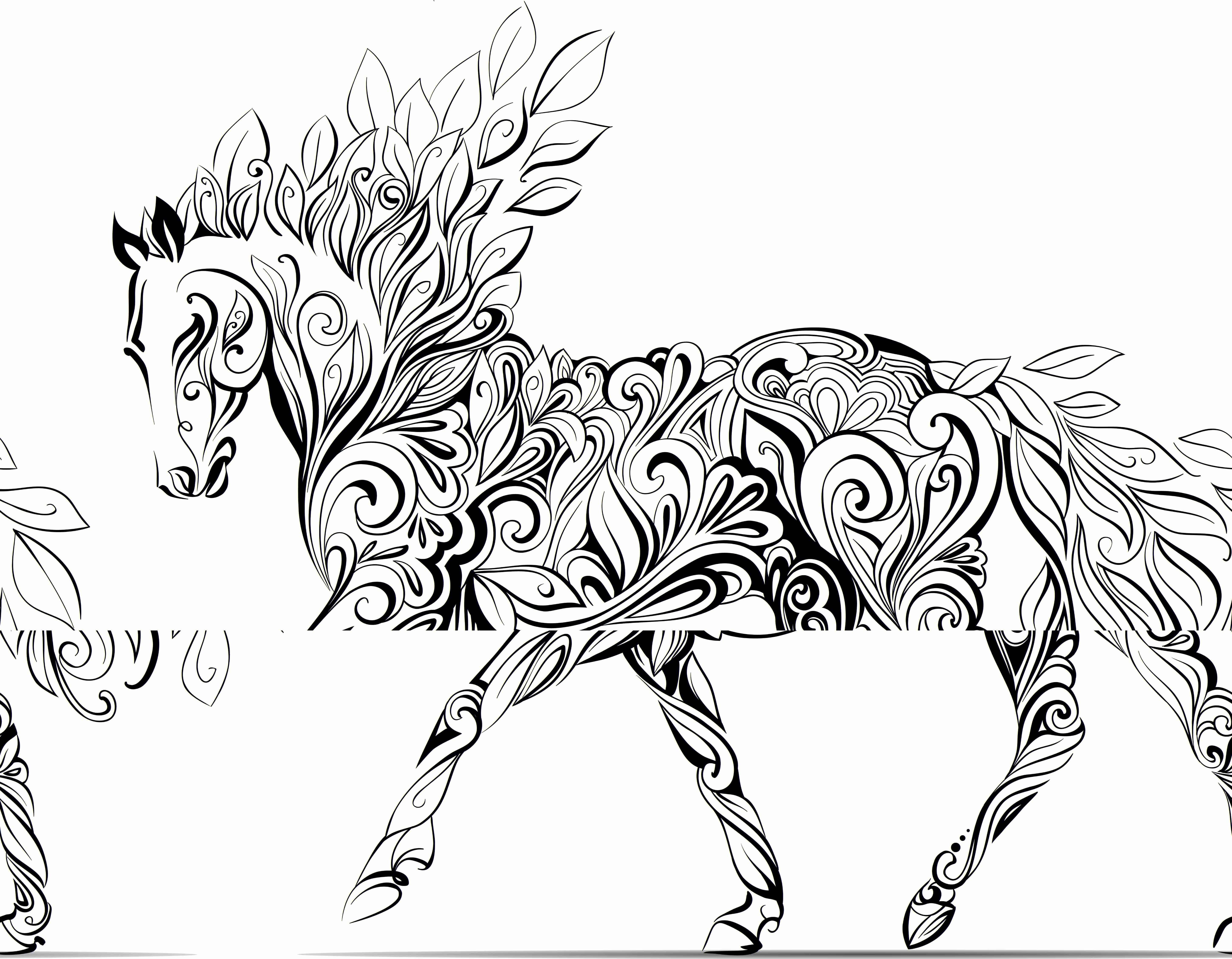 Unicorn Pictures To Colour In