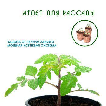 препарат от перерастания рассады томатов