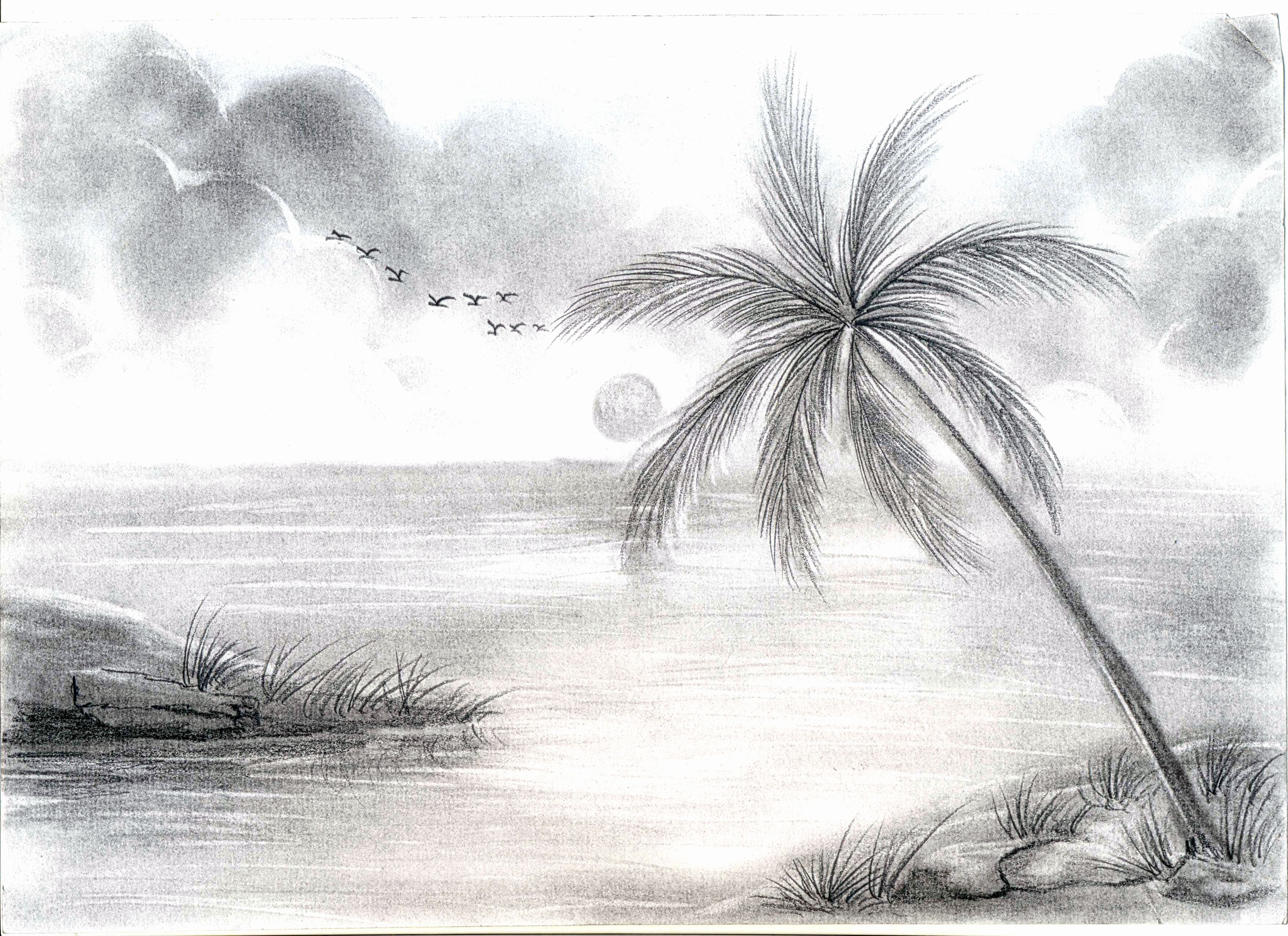 Landscape Drawing Ideas Awesome Nature Scenry Sketch Ideas ...