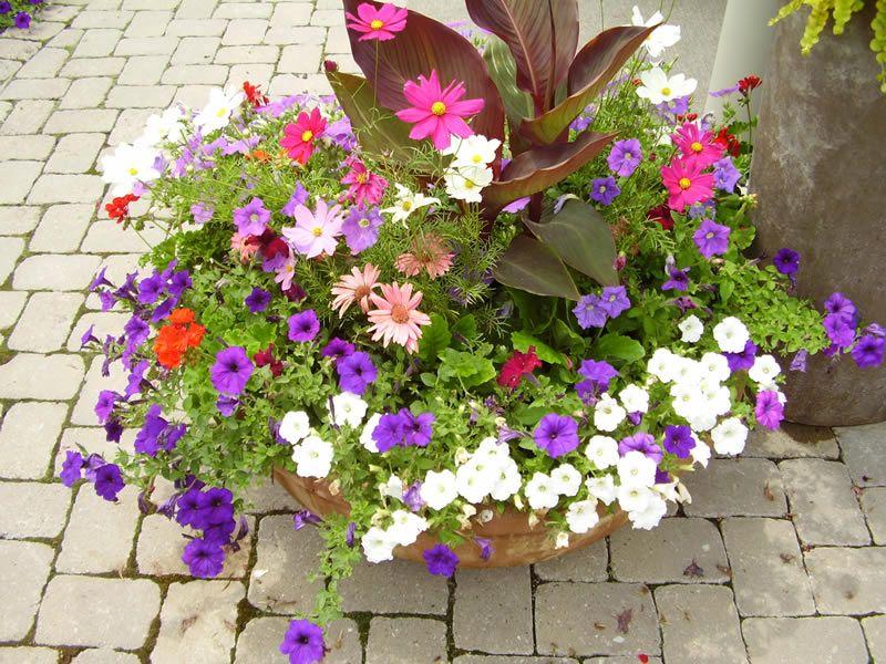 Fantastic Flower Planters