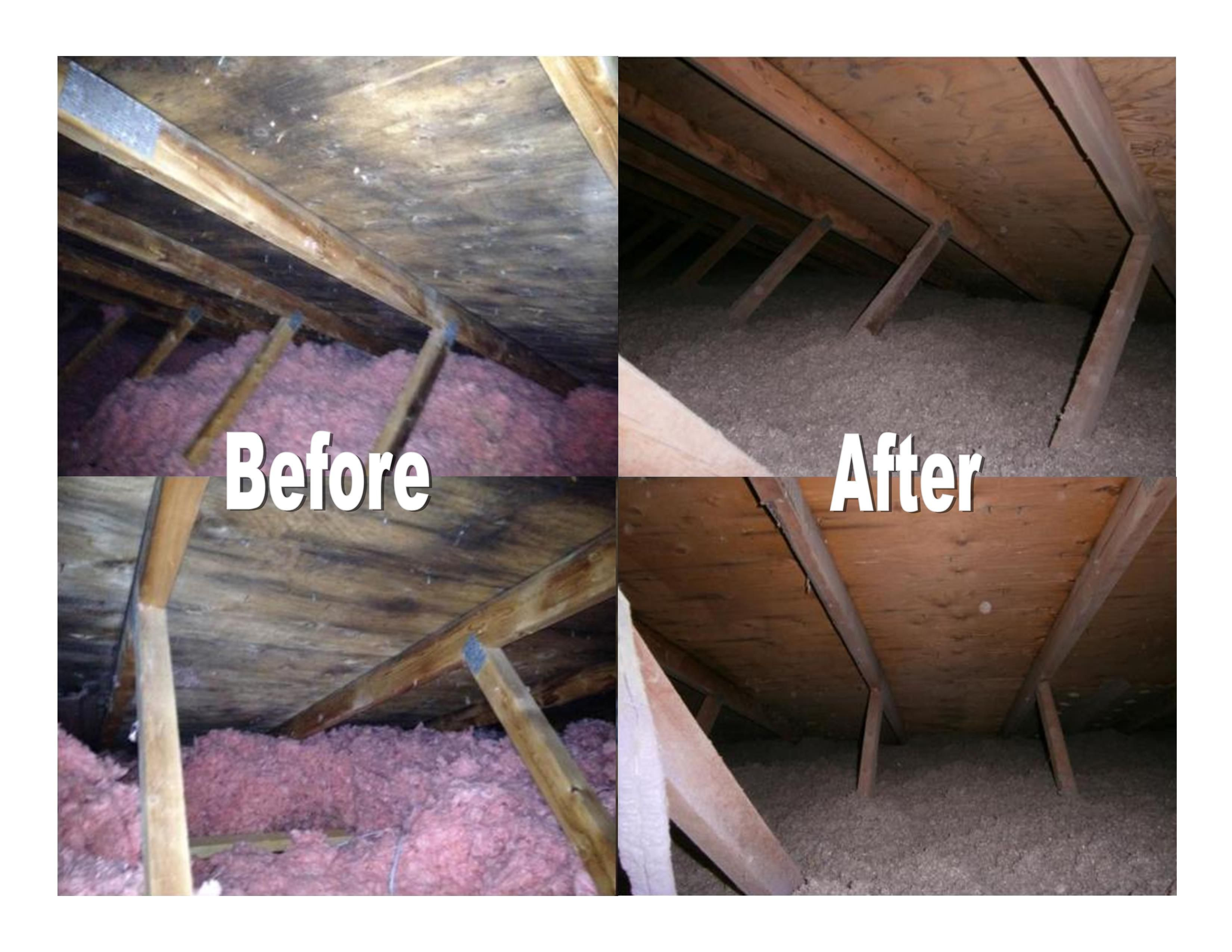 Before After Attic Insulation Pictures Call For Your Free Estimate Today 727 776 0942 Restoration Services Restoration Water Damage