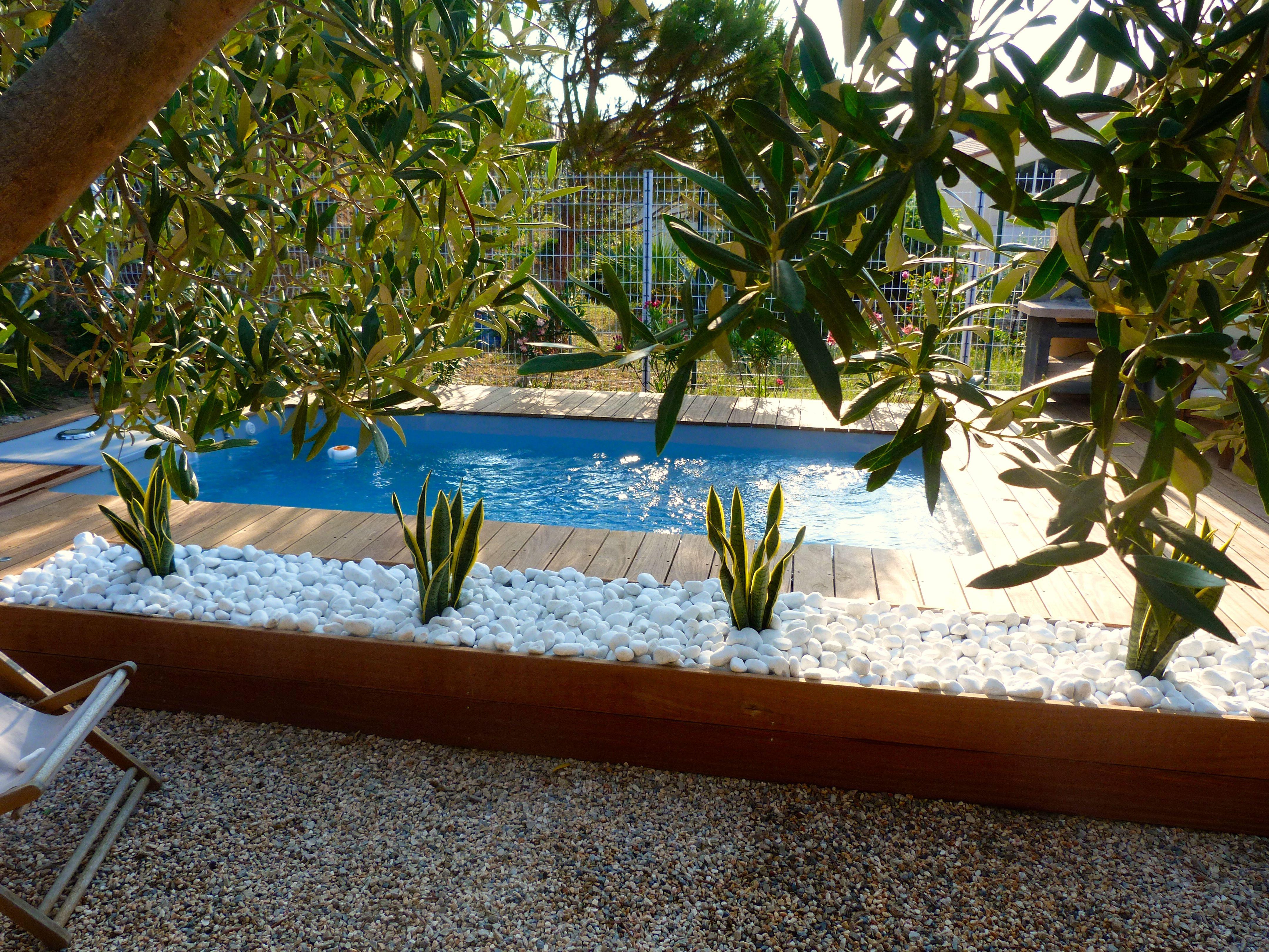 Charmant Jardinière En Bois, Remplie De Graviers Blancs Et Cactus. En Fond Petite  Piscine Coque