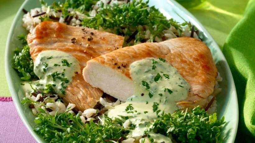 Kräutersoße Ein saftiges Putensteak mit einer cremigen Kräutersoße und Reis ist schnell zubereitet und perfekt als Abendessen. Zum Rezept...Ein saftiges Putensteak mit einer cremigen Kräutersoße und Reis ist schnell zubereitet und perfekt als Abendessen. Zum Rezept...mit Kräutersoße Ein saftiges Putensteak mit einer cremigen Kräutersoße und...